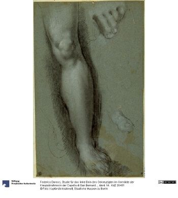 Federico Barocci - Leg Study and Toes c. 1568-69 (Studie für das linke Bein des Gekreuzigten im Gemälde der Kreuzabnahme in der Capella di San Bernardino im Dom von Perugia); Staatliche Museen zu Berlin