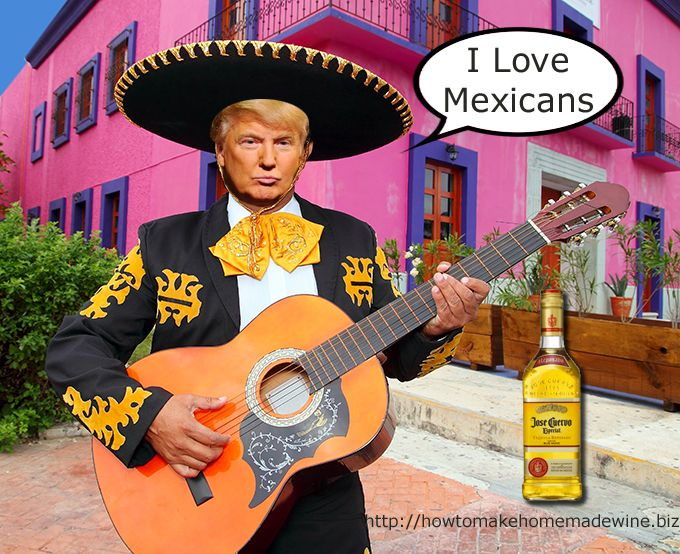 Proof that Trump Loves Mexicans... http://howtomakehomemadewine.biz |  Mariachi, Mexican mariachi, Cinco de mayo