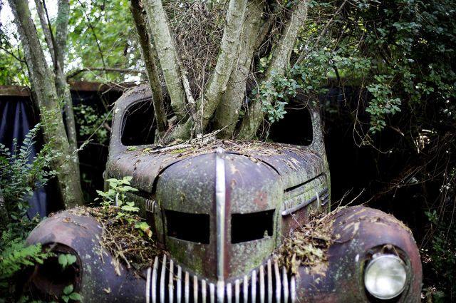 A Haunting Tour of a 4,000-Car Graveyard  - PopularMechanics.com