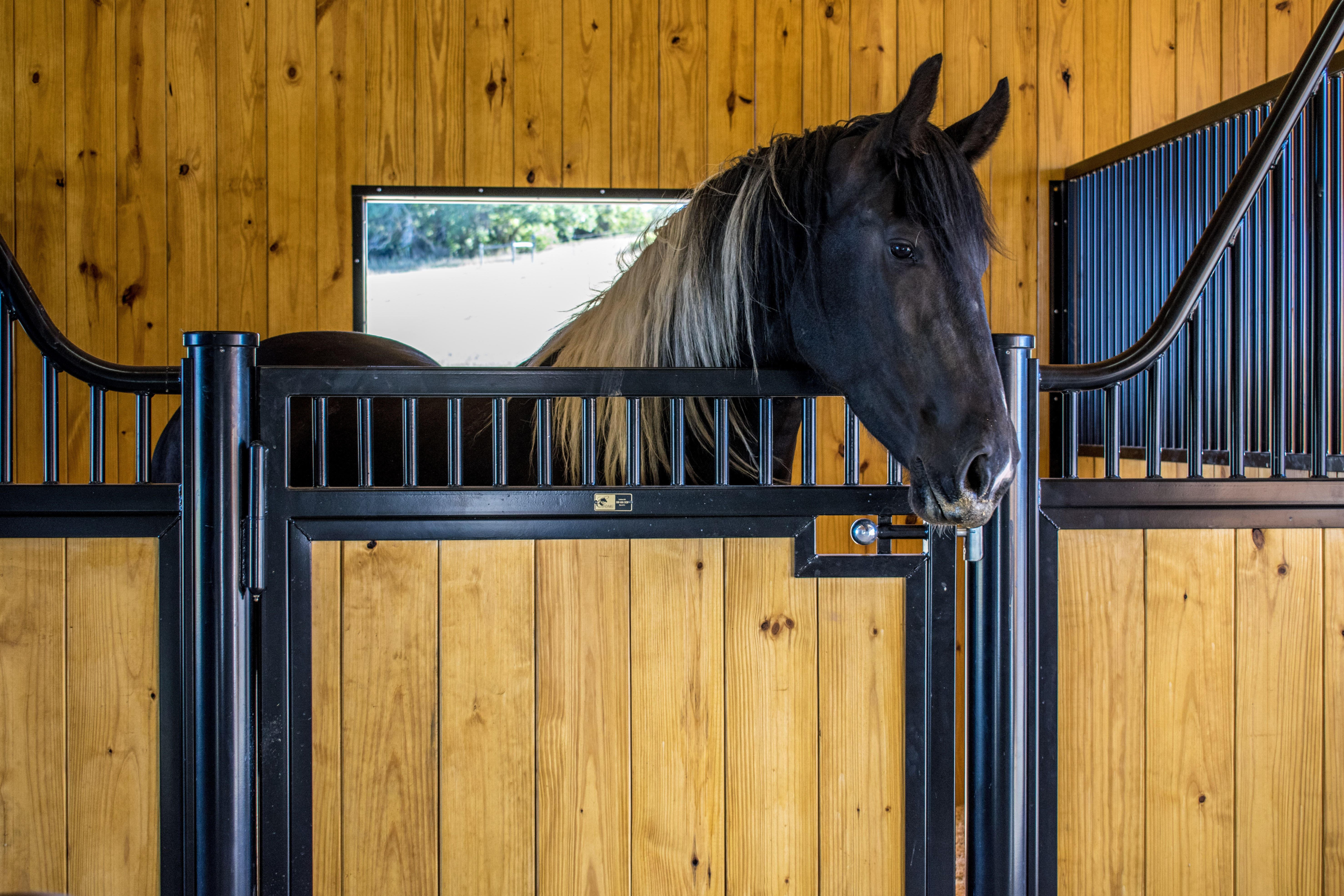 and content builders barn ranches to highlight colorado sp horse pole proud barns property