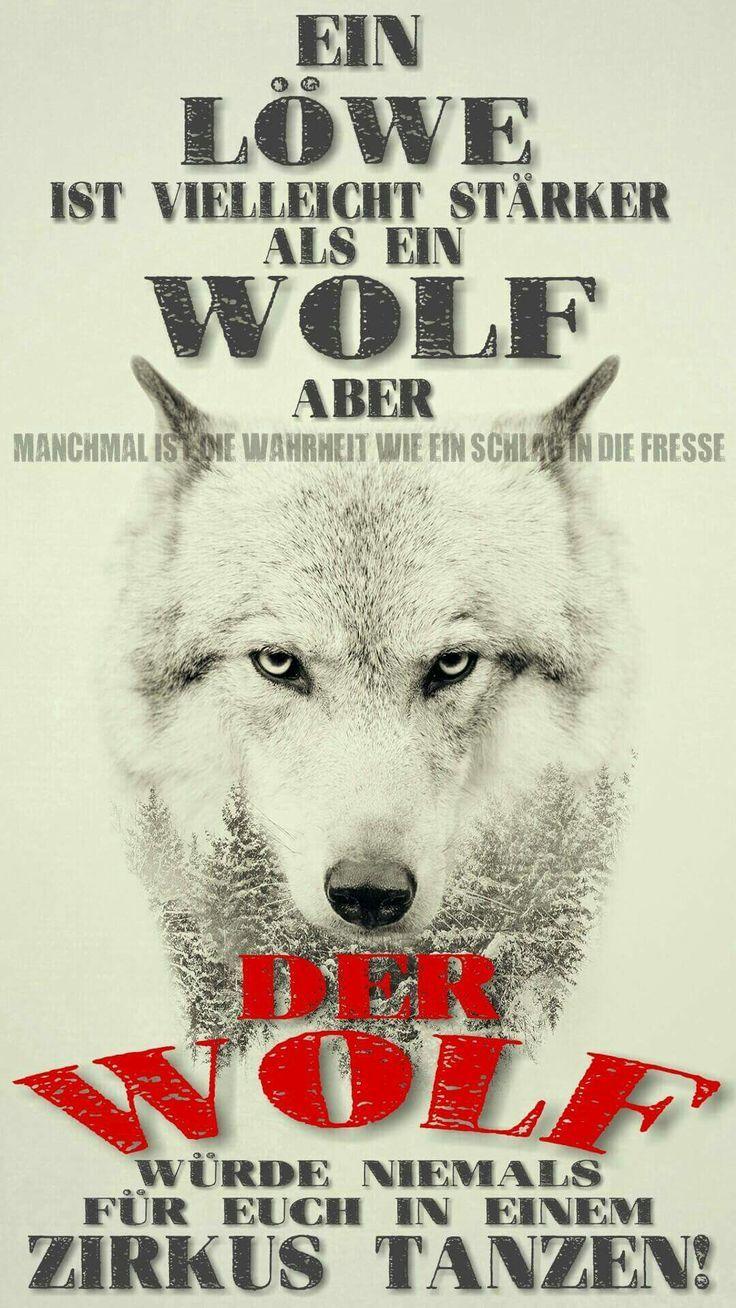 Wolf Sprüche Deutsch