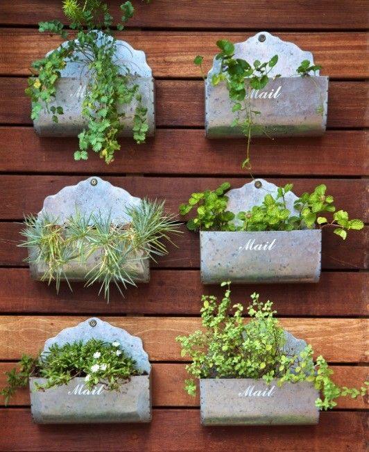 Como hacer un huerto casero gardens for Preparar el huerto en invierno