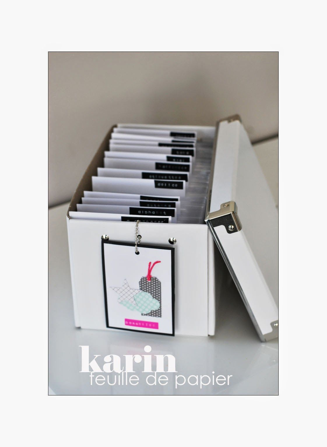 feuille de papier scrapbooking rangement par karin. Black Bedroom Furniture Sets. Home Design Ideas