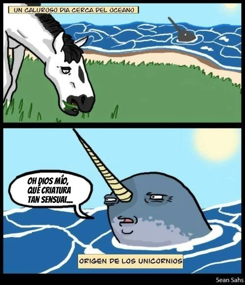 Unicornio 3 Imagenes De Unicornios Memes De Cd9 Chiste En Espanol