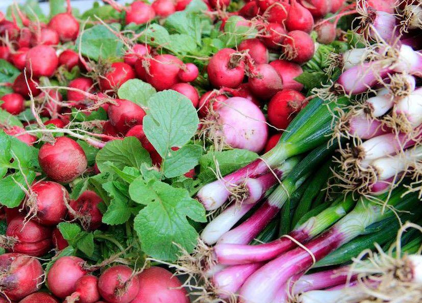 Illinois Vegetable Garden Guide - Growing your own garden #farmersmarket #SpfldClinic