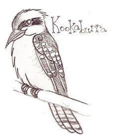 Kookaburra Coloring Page Kids Animal Doodles Children Sketch