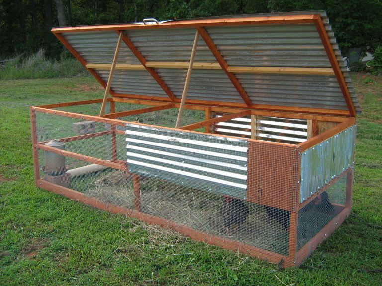 Every Vegetable Garden Needs A Chicken Tractor Urban Counter