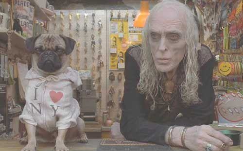 Frank The Pug From Mib Who Are You Calling An Alien Frank The
