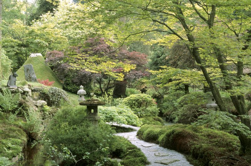 A Japanese garden in Cheshire | Japanese garden design ...