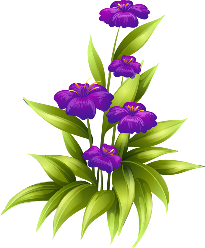самому картинки цветов с названиями без фона решение стало своего