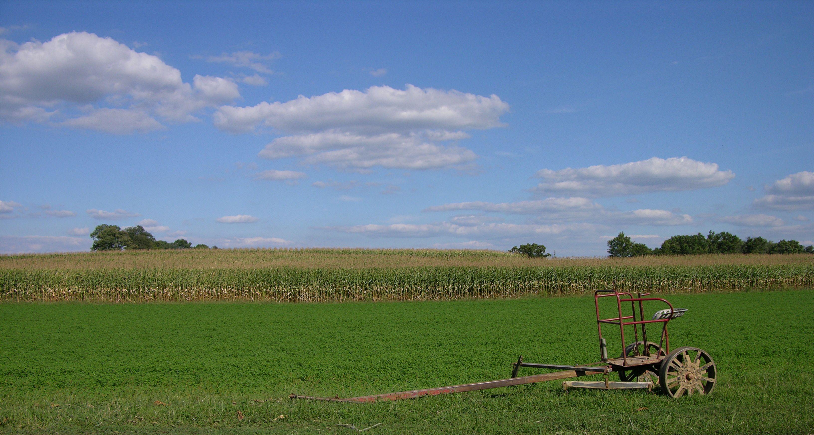 Typical Lancaster County Farm Landscape (Lancaster County