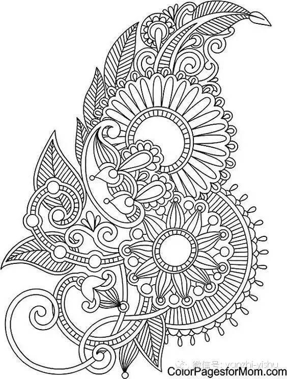photo about Printable Adult Coloring Pages Paisley named Pin as a result of SHERRI CALLAHAN upon quilling Paisley coloring internet pages