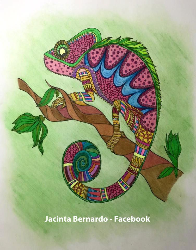 Finished Coloring Page Cameleon Finished Coloring Pages