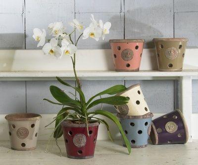 Kew orchid pot xox gardenlove pinterest orchid pot orchid kew orchid pot workwithnaturefo