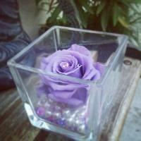Fleurs stabilisées VASE et sa ROSE éternelle fleur stabilisée LUXE