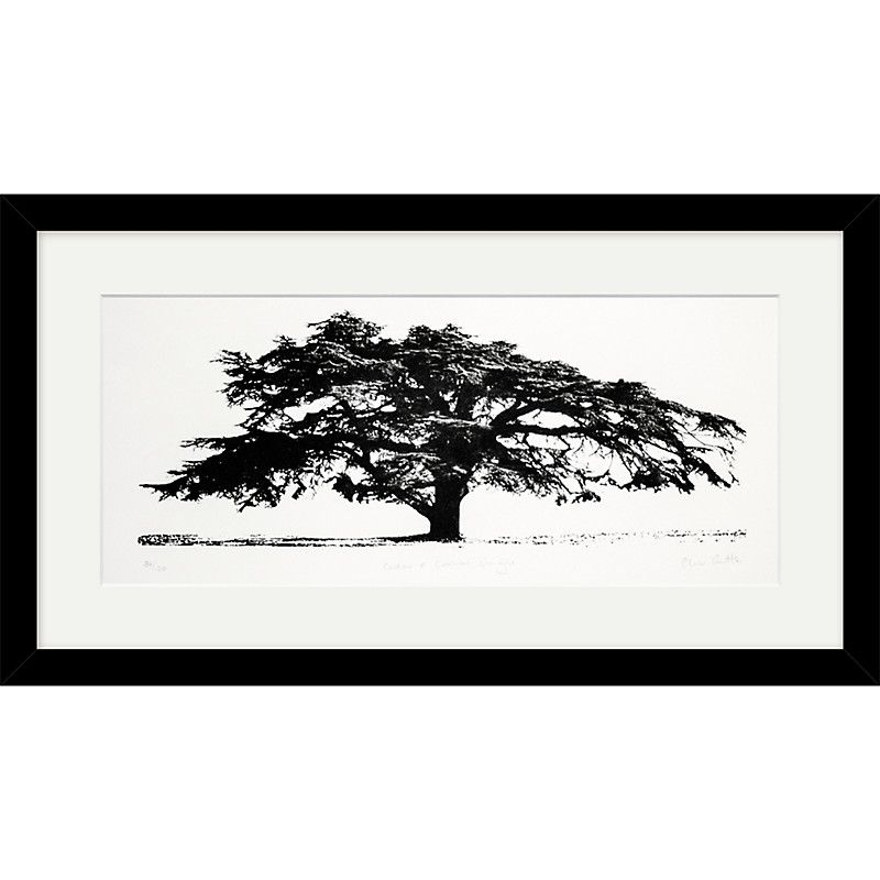 Buy Clare Cutts - Cedar at Coombe Dingle, Original Screenprint, 38 x 68cm | John Lewis