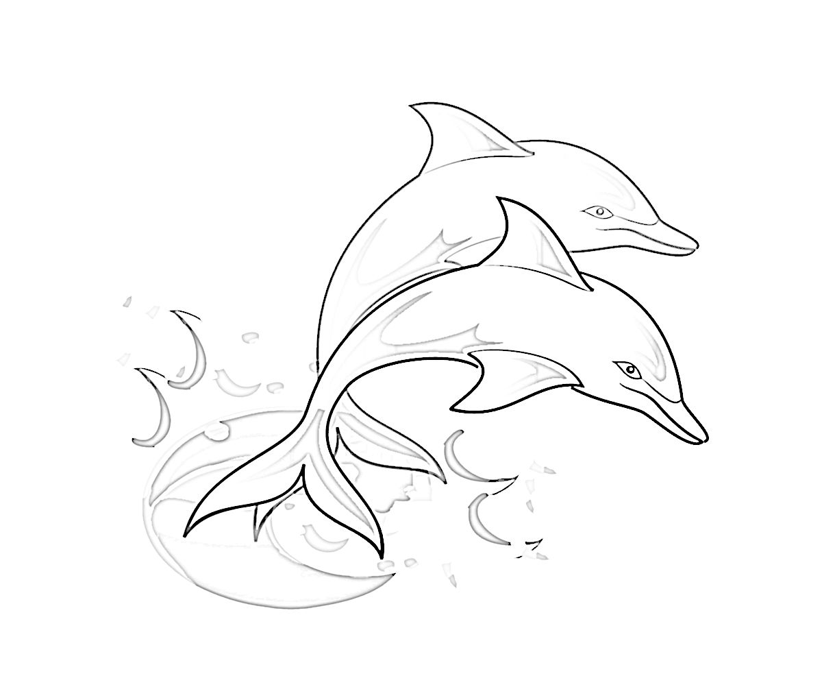 Dolphin Coloring Page | Wow! All About Animals | Riley\'s gift ...