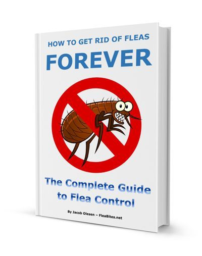 How to Get Rid of Fleas in the Yard - 5 Effective Ways ...