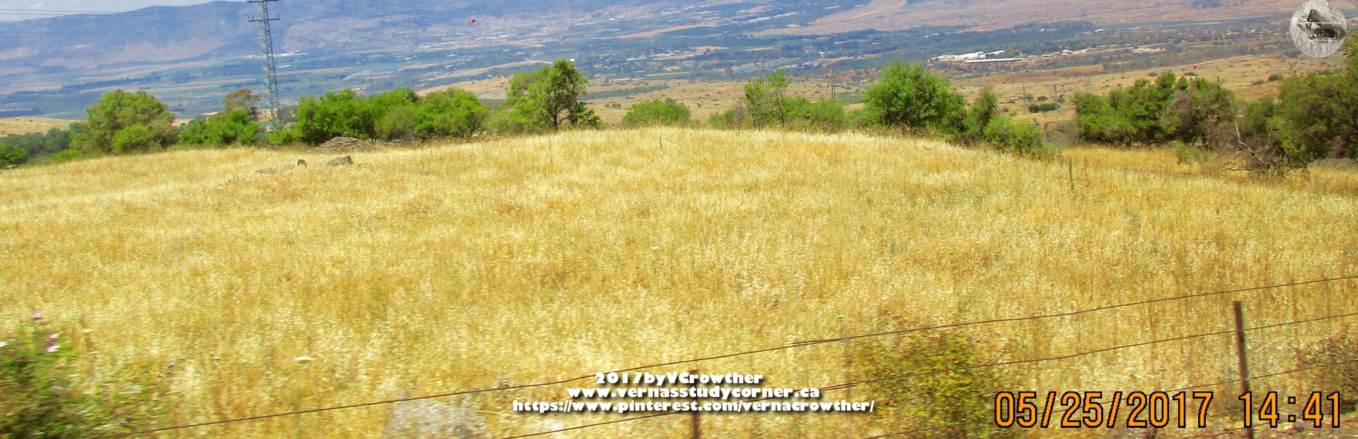 Wheat field in galilee hills israel 2017 interests and wheat field in galilee hills israel 2017 buycottarizona Choice Image