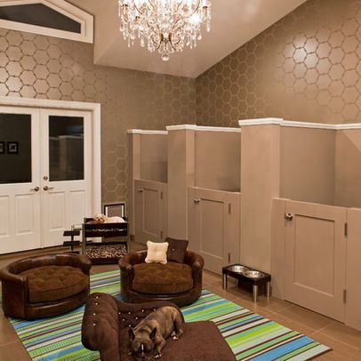Rooms For Pets Design Ideas, Pretty Fancy for our two ...