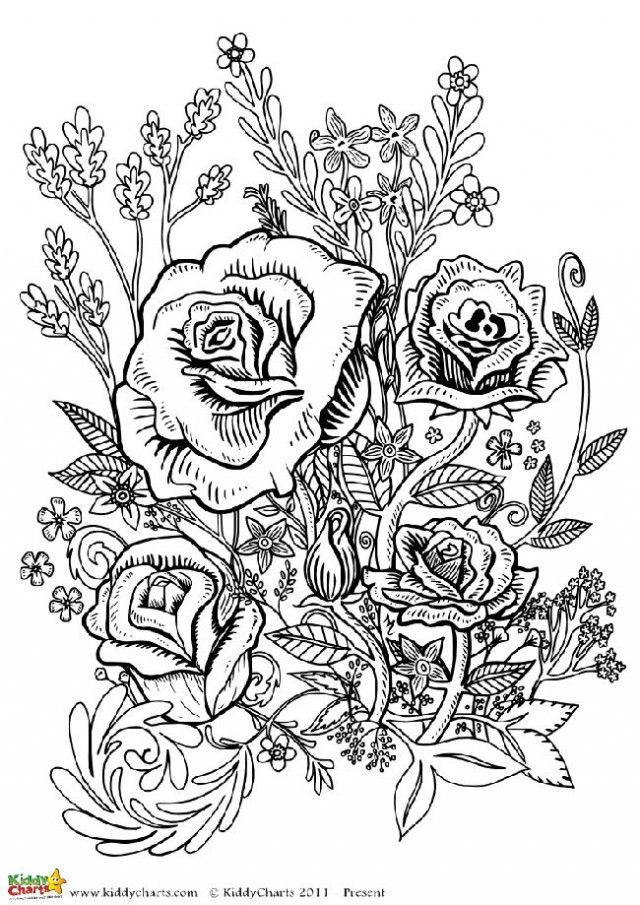 Four free flower coloring pages for adults | Flower designs ...