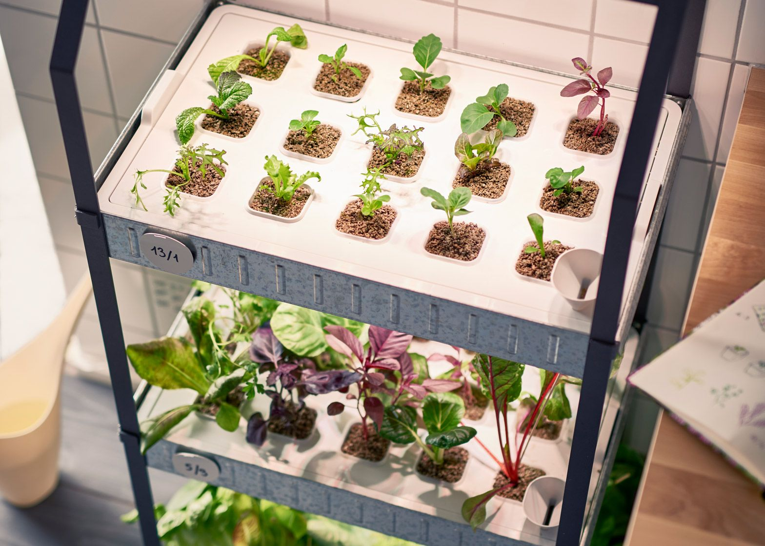 Ikea moves into indoor gardening with hydroponic kit indoor ikea moves into indoor gardening with hydroponic kit workwithnaturefo