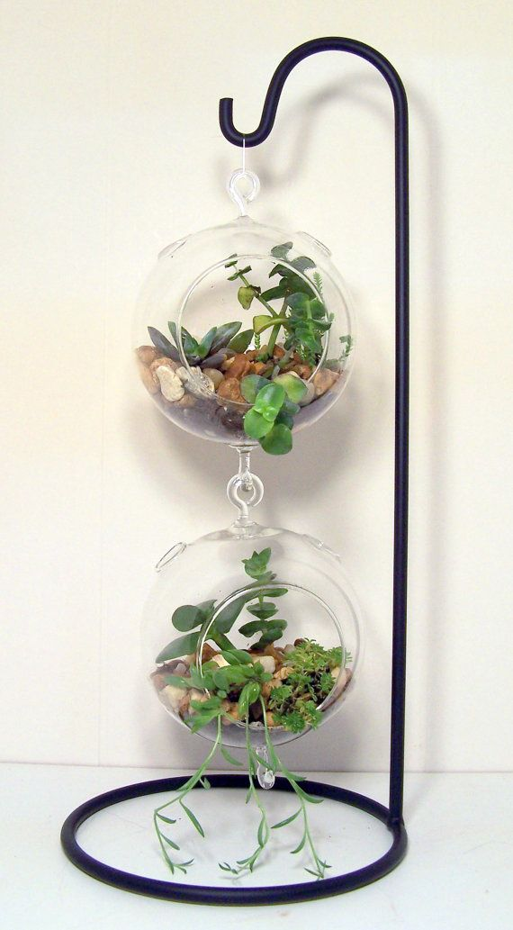 Large Hanging Glass Terrarium Stand Or By Flatherscreations 11 00