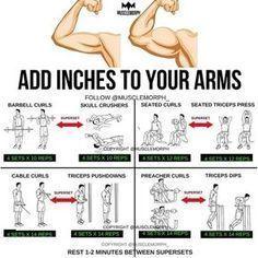 8129 likes 56 comments  musclemorph® musclemorph on