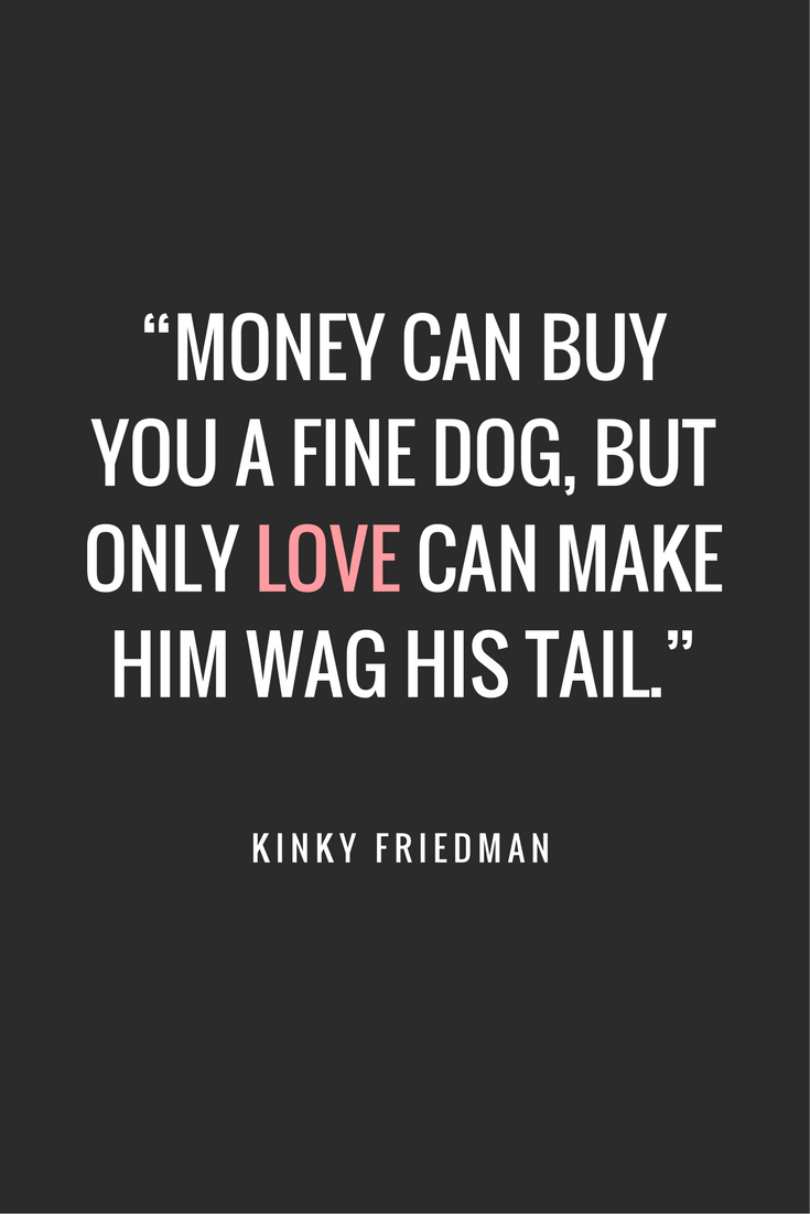 Quotes About Houses 75 Of The Best Inspirational & Funny Quotes About Dogs Dog