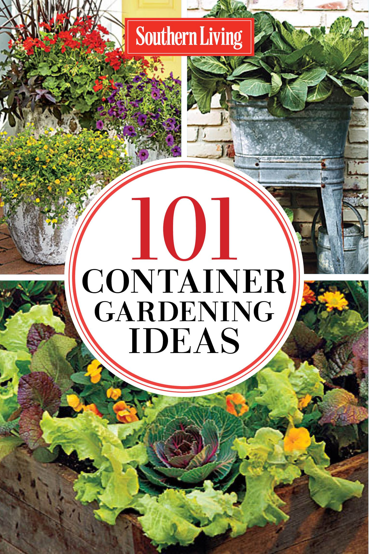 121 Container Gardening Ideas 121 Container Gardening