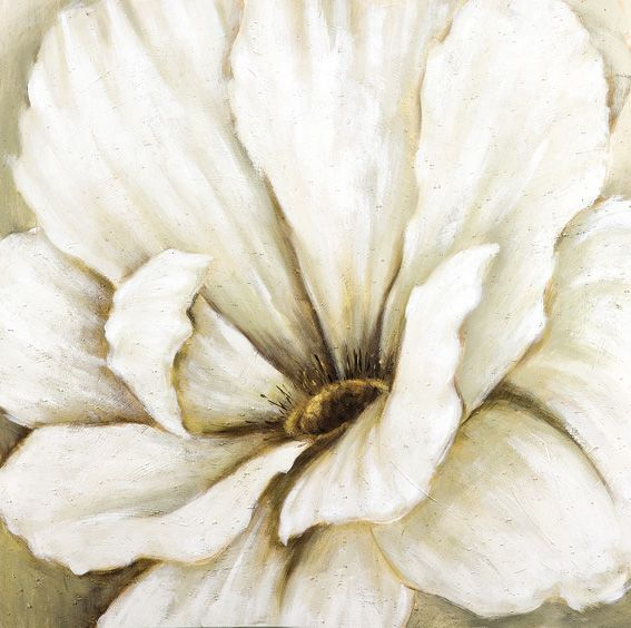 White flower close up oil painting pinterest oil and white flower close up oil painting mightylinksfo Images