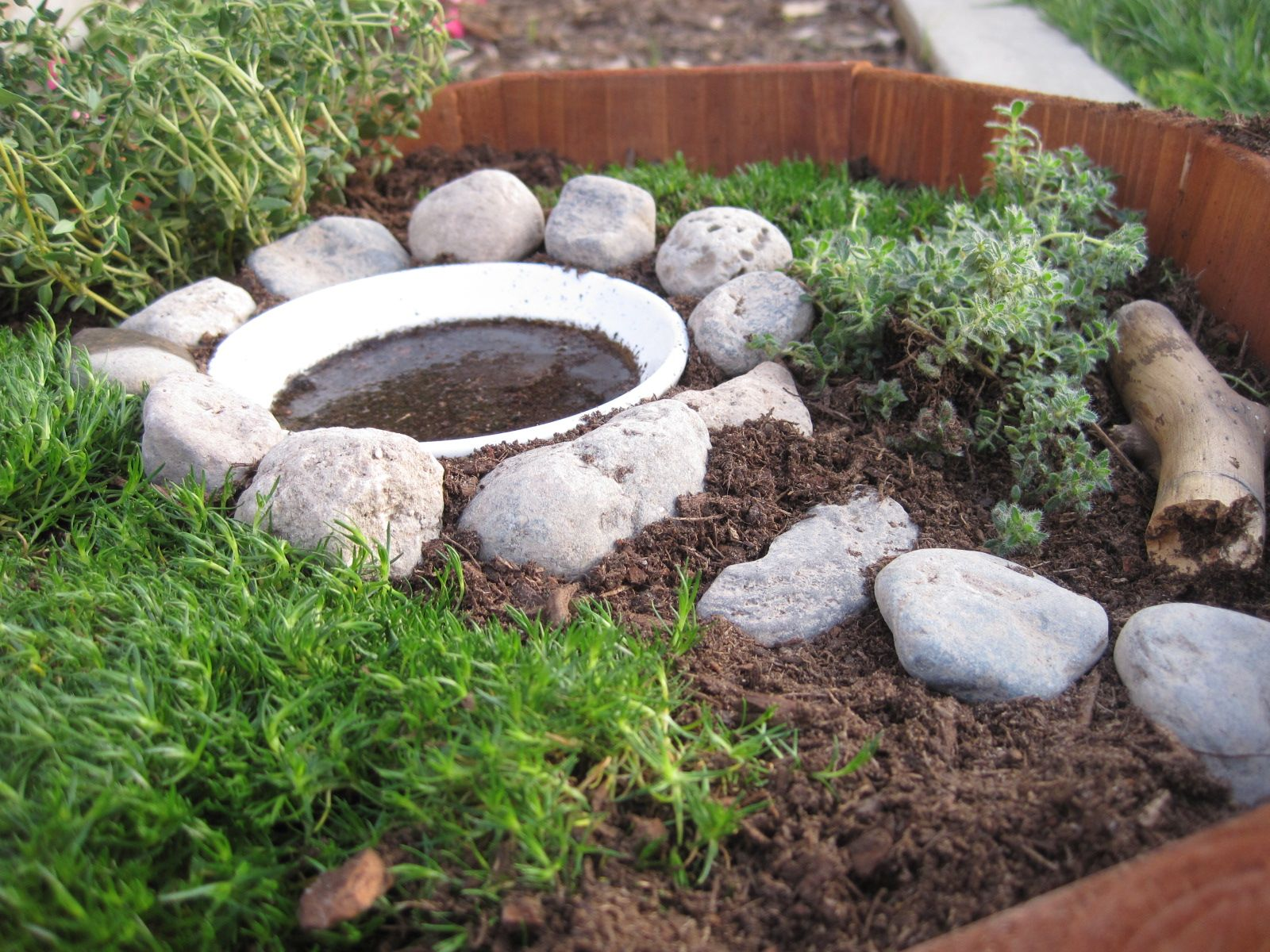 17 Best 1000 images about Landscape design for Fairy Gardens on Pinterest
