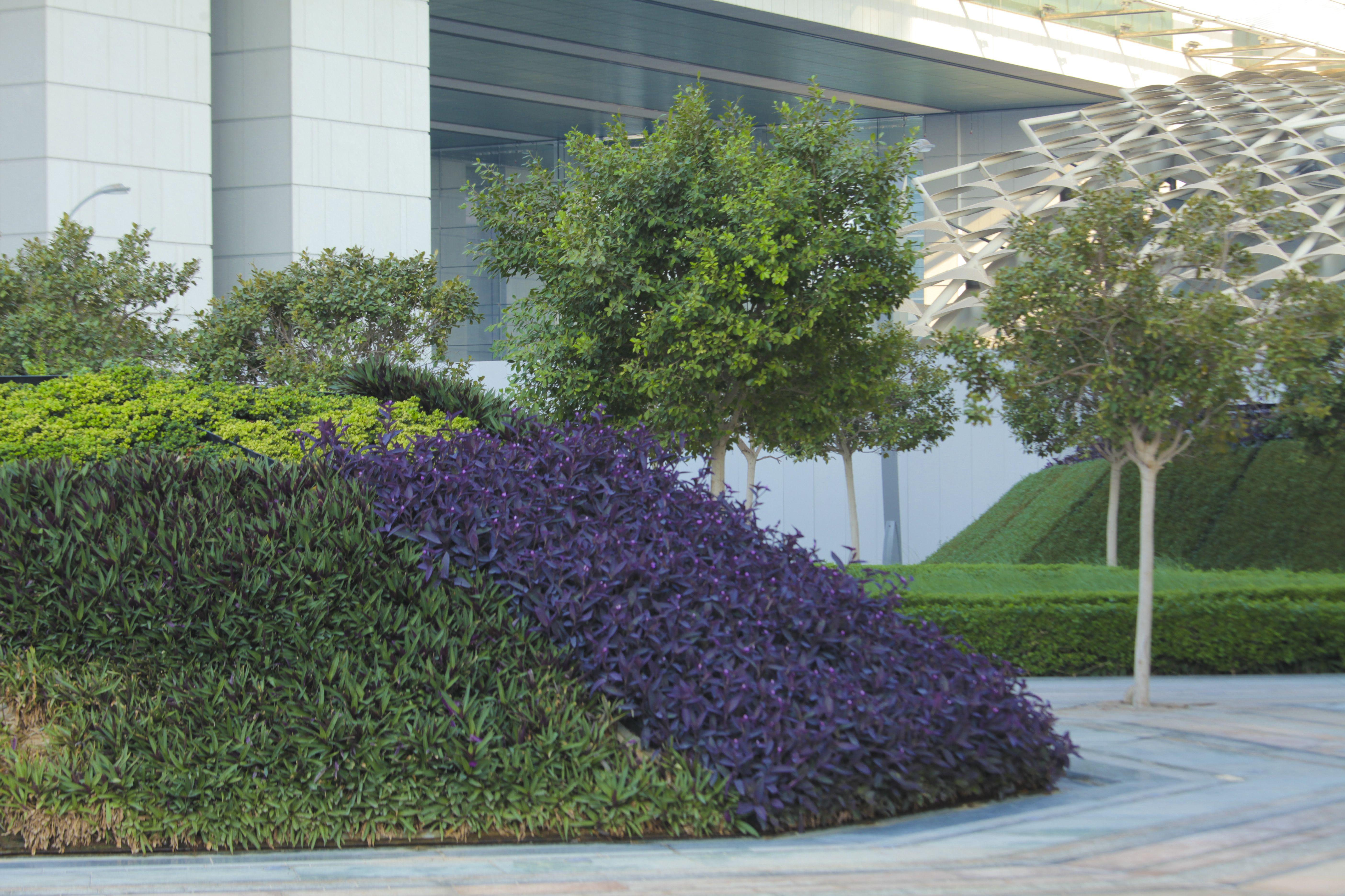 Elegant Sowwah Square, Abu Dhabi, Arab Emirates United. Landscape Architecture By  Martha Schwartz Partners