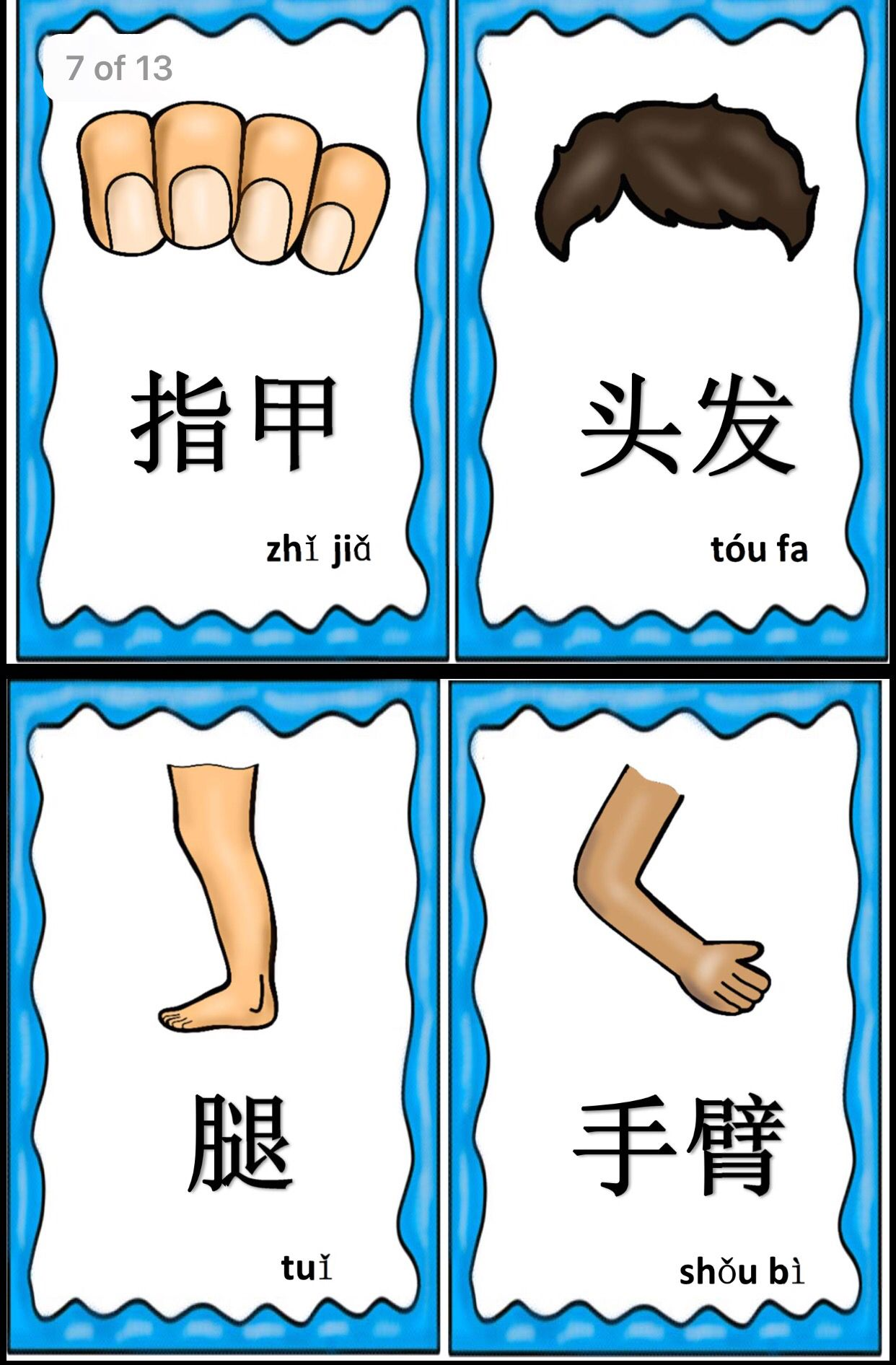 Pin by Xiaobo Lu on Mandarin Body parts flashcards/ game cards ...