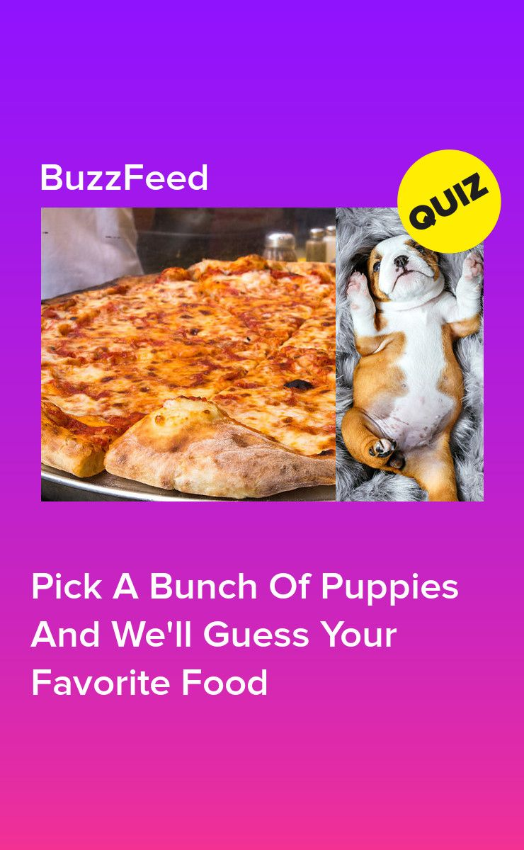 Pick a bunch of puppies and well guess your favorite food