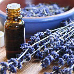 La aromaterapia es una rama de la fitoterapia que utiliza los aceites esenciales de algunas plantas, especialmente estimulantes por su alta concentración en substancias activas, con fines...