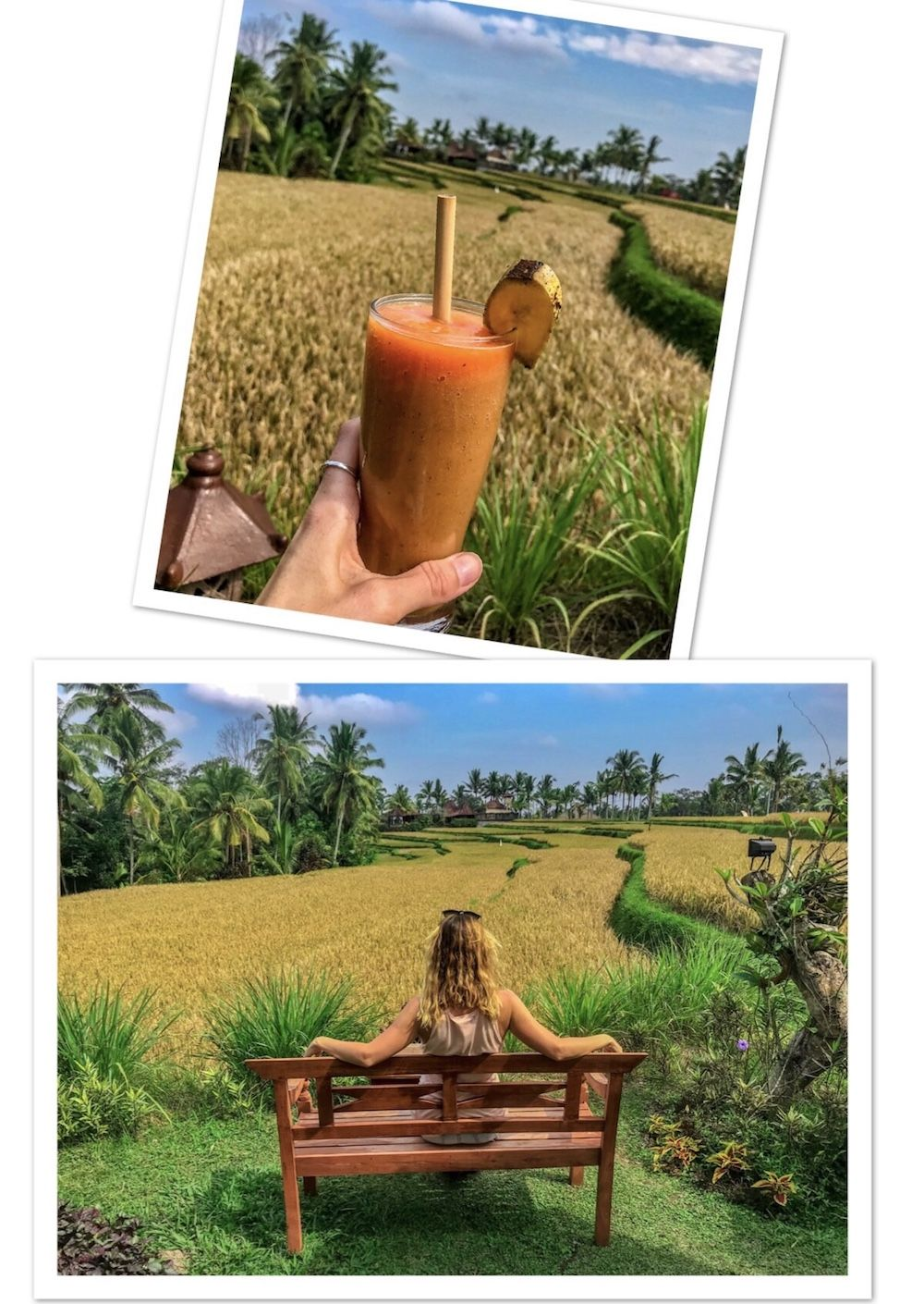 7 Astounding Warung Places to Eat in Ubud Away From