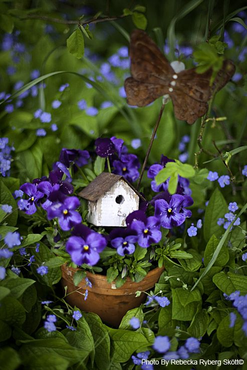 Small Blue Hydrangea Plant In Pot Miniature Fairy Garden We Take Customers As Our Gods Dolls & Bears