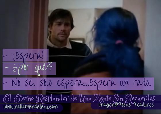 Eternal Sunshine Of The Spotless Mind Joey