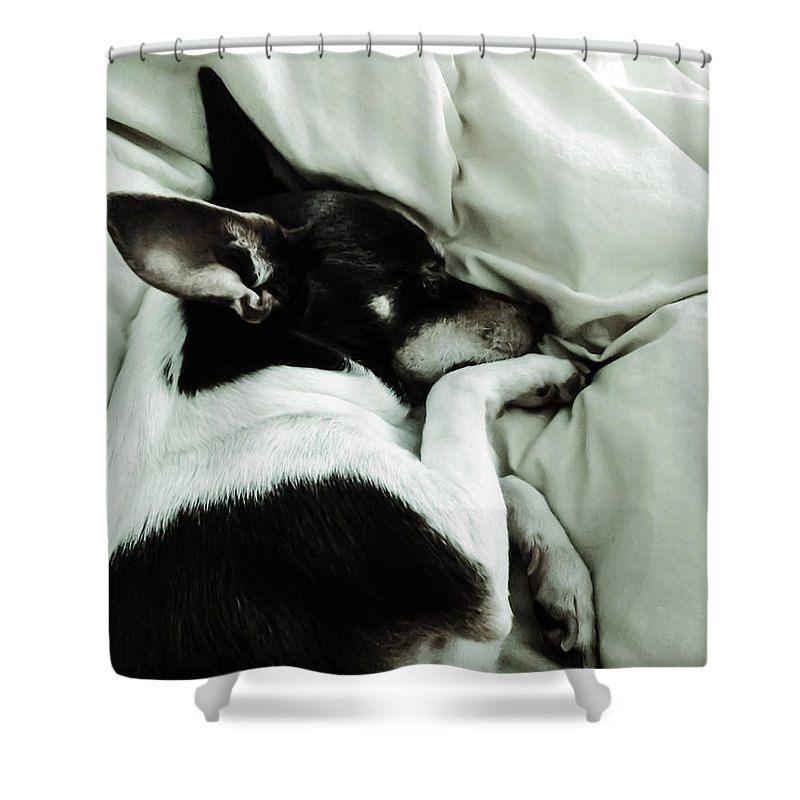 Unique Rat Terrier Rescue Dog Shower Curtain Designer Bathroom