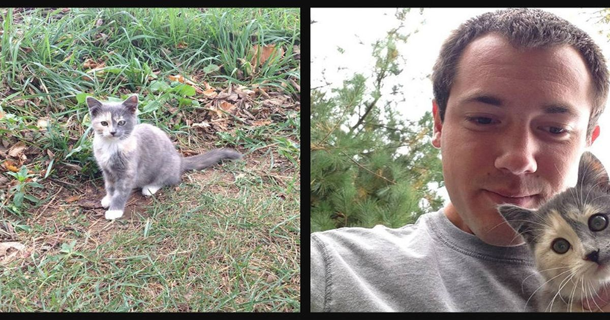 Man captured the moment he met his cat for the first time