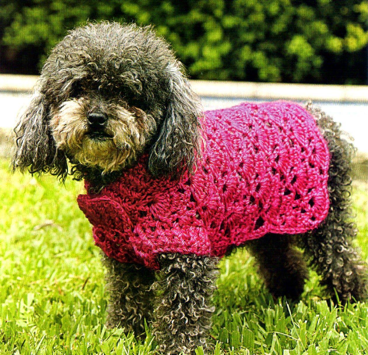 Mis labores en Crochet Paso a paso del suéter para mascotas.