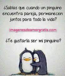 Resultado De Imagen Para Pinguinos Animados Tiernos Nicki Amor