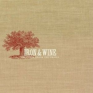 Iron And Wine Flightless Bird American Mouth Album Cover Google Search Cool Things To Buy Cradle Album Covers