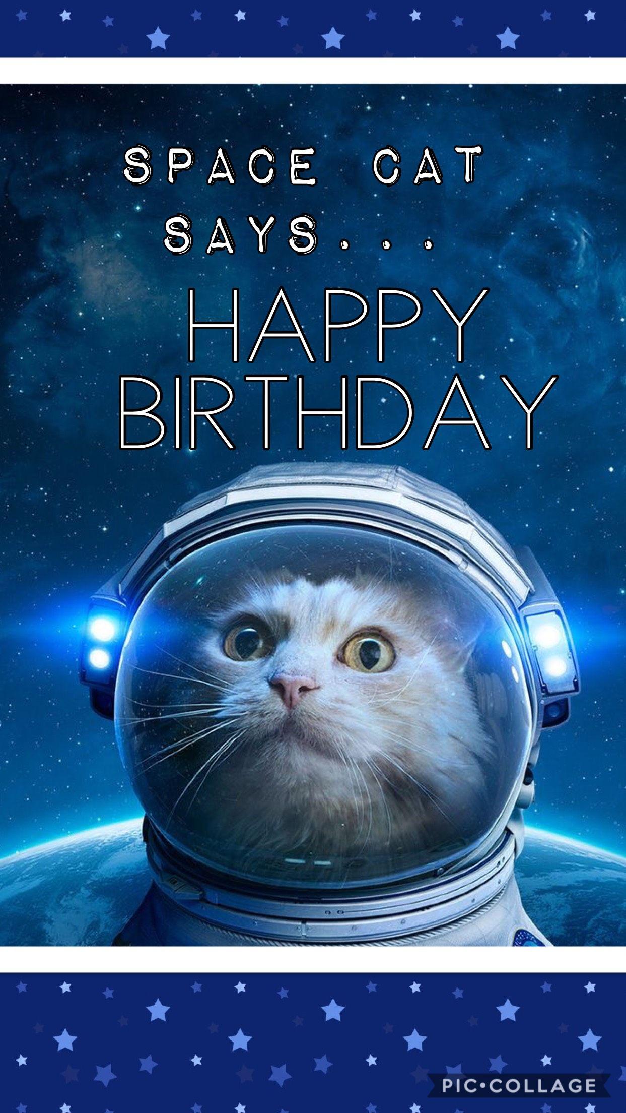 Space cat happy bday Happy birthday cat, Cat birthday