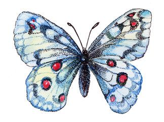 Butterfly Watercolor Flying Butterfly White White Butterfly Graphics Watercolor Flower Illustration Watercolor Pattern Unique Items Products