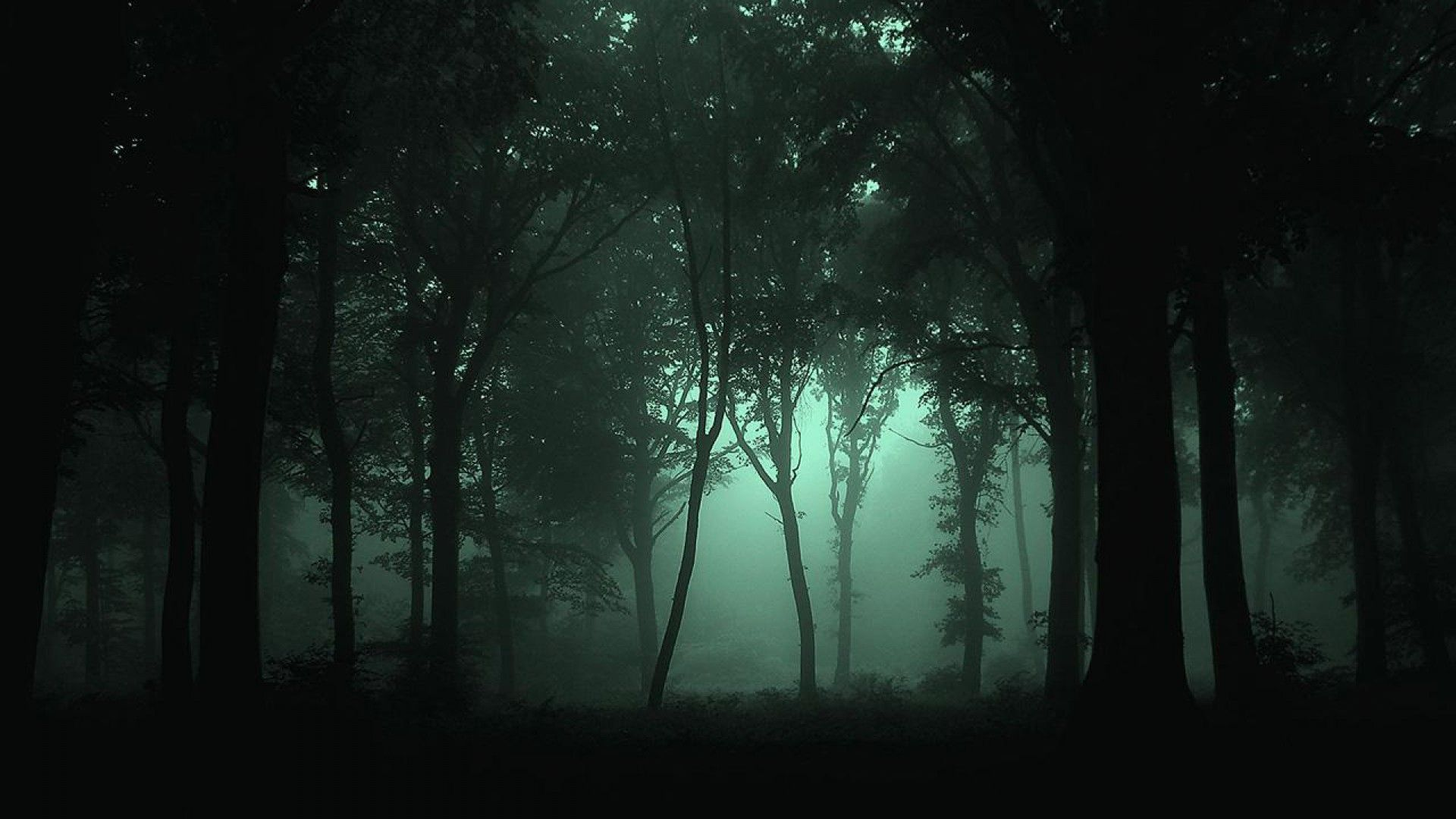 Scary Fog Wallpapers 3d Abstract Wallpapers Floresta Natureza Arte Obscura