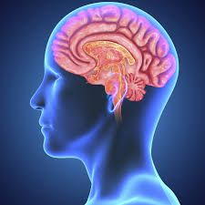 Healthy Tips for Brain