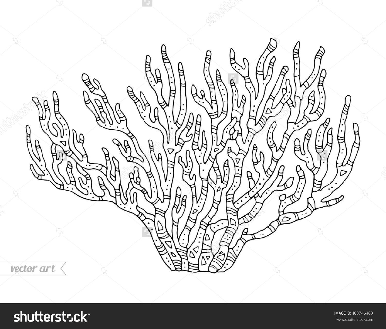 coral isolé récifs coralliens vector illustration corail