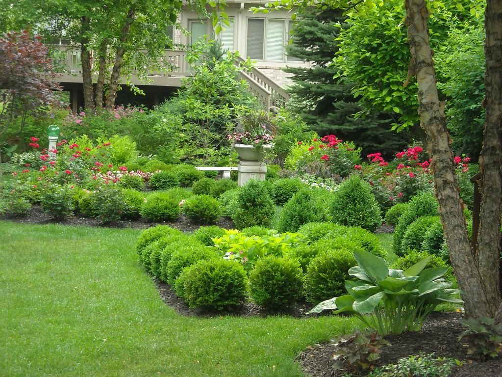 Softscape Design - FlowerPictures.us | Beautiful gardens, Design, Garden